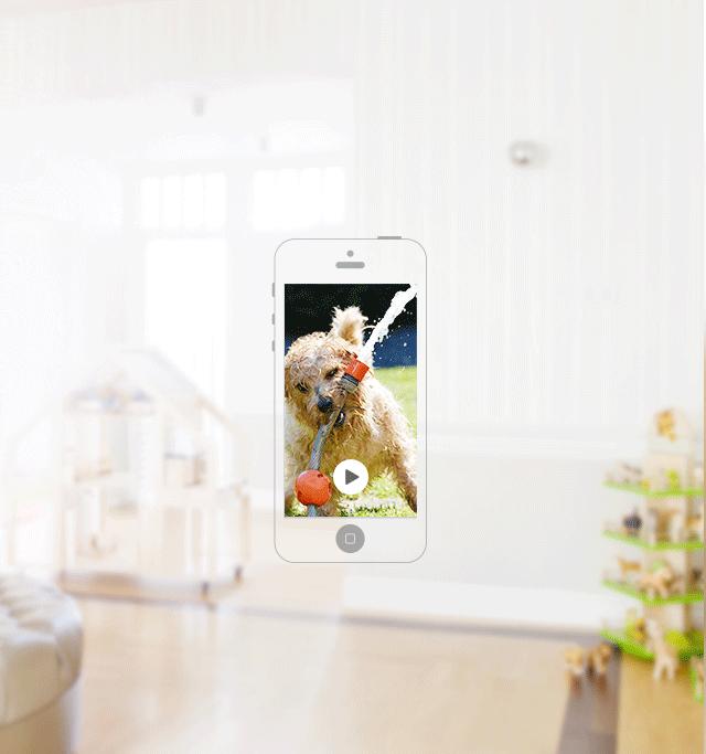 Облако Imou обеспечивает получение вами видео в реальном времени.